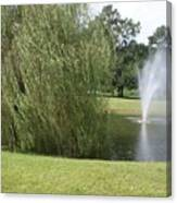 Weeping Willow And Fountain Canvas Print