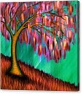 Weeping Willow IIi Canvas Print