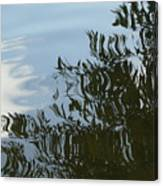 Weeping Willow Reflection Canvas Print