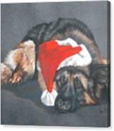 Weihnachtshund Canvas Print