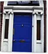 Well Woman Door In Dublin Canvas Print