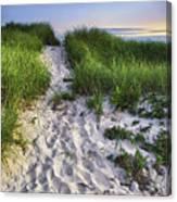 Wellfleet Beach Path Canvas Print