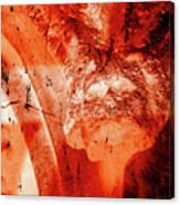Wells Cathedral Gargoyles Color Negative B Canvas Print