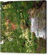 West Branch Of The Rifle River Canvas Print