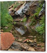 West Fork Trail River And Rock Vertical Canvas Print