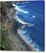 West Maui Coast Overview Canvas Print