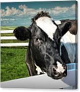 West Michigan Dairy Cow Canvas Print