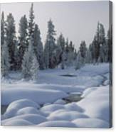 West Thumb Snow Pillows Canvas Print