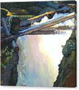 West Yaak Falls Canvas Print