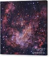 Westerlund 2 Star Cluster In Carina Canvas Print