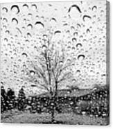 Wet Car Window B Canvas Print