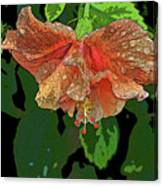 Wet Hibiscus Canvas Print