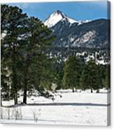 Wet Mountain Valley In Winter Canvas Print