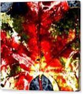 Wet Single Leaf Canvas Print