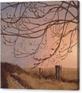 Wet Spring Soft Sunset  Canvas Print