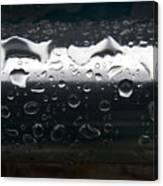 Wet Steel-1 Canvas Print
