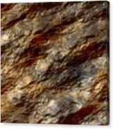 Wet Stone 2 Canvas Print
