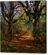 Wetlands In The Fall Canvas Print