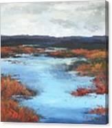 Wetlands Of Washington Canvas Print