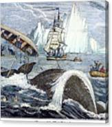 Whaling, 1833 Canvas Print