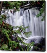 Whatcom Falls Cascade Canvas Print