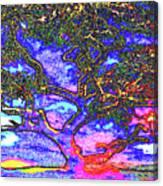 Whatwoods Tree Canvas Print