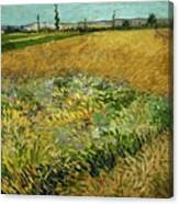 Wheat Field With Alpilles Foothills In The Background At Wheat Fields Van Gogh Series, By Vincent  Canvas Print