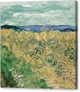 Wheat Field With Cornflowers At Wheat Fields Van Gogh Series, By Vincent Van Gogh Canvas Print