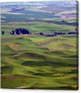 Wheat Fields Of The Palouse - Eastern Washington State Canvas Print
