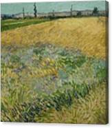 Wheatfield Arles, June 1888 Vincent Van Gogh 1853 - 1890 Canvas Print