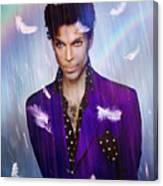When Doves Cry Canvas Print