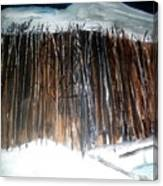 When Night Falls Canvas Print