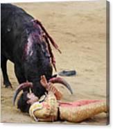 When The Bull Gores The Matador Vii Canvas Print