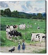 When The Cows Come Home, It's Milking Time Canvas Print