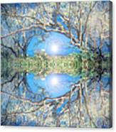 When Trees Embrace Canvas Print