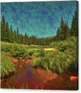 Where Brookies Swim Canvas Print