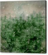 Where Wild Stars Fall  Canvas Print
