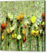 Whimsical Poppies On The Wall Canvas Print
