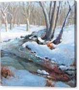 Whippany Brook In Winter Canvas Print