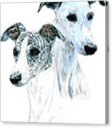 Whippet Pair Canvas Print