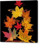Whirling Autumn Leaves Canvas Print