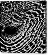 Whirlpool Abstract - Bw Canvas Print