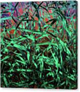 Whispering Grass Canvas Print