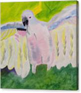 Pastel Feathered Cockatoo Canvas Print