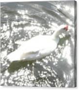 White Bird On Sparkly Water Canvas Print