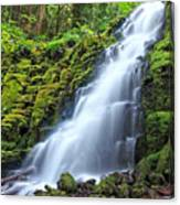 White Branch Falls Canvas Print