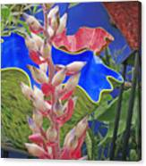 White Bromeliad With Glass Vases Canvas Print