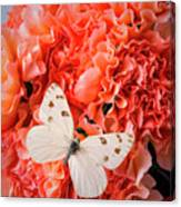 White Butterfly On Pink Carnations Canvas Print