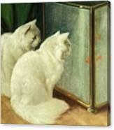 White Cats Watching Goldfish Canvas Print