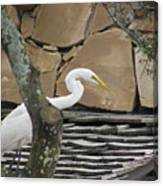 White Crane On Roof Canvas Print